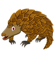 cute pangolin cartoon vector image