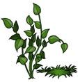 Plant Set vector image
