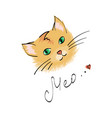 doodle of cute cat vector image