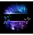 Banner with Glowing Butterflies vector image