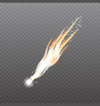 meteorcomet or rocket trails vector image