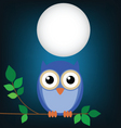 owl night vector image vector image