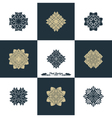 Design Luxury Template Set Swash Elements Art vector image