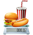 Junkfood on the scale vector image