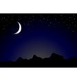 Dark moonlight night background vector image