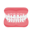 jaw with teeth icon flat style open mouth vector image
