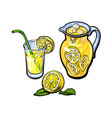 lemonade jug glass of lemon juice straw vector image