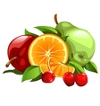 Set of apple pear orange and cherries vector image