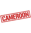 cameroon red square stamp vector image