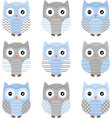 Blue and Grey Cute Owl Collections vector image vector image