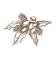 poinsettia leaf berry decoration christmas vector image