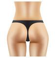 sexy women ass in black panties vector image