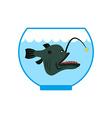 Deep sea fish in Aquarium Terrible anglerfish in vector image