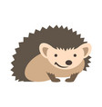 Cute smiling hedgehog kids cartoon vector image