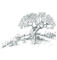 Olive tree graphic vector image vector image
