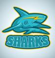 shark logo vector image