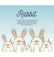 cartoon icon rabbit design isolated vector image