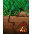 Snake living under the ground vector image