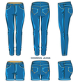 Women jeans pants and shorts vector image