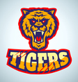 tigers vector image