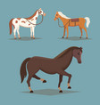 collection of isolated horses cute cartoon horse vector image