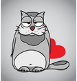 Cat hiding Valentines gift vector image
