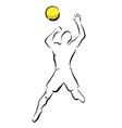 Volleyball smash vector image