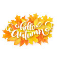 Banner with hand lettering label - hello vector image