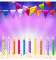Happy Birthday Candles vector image