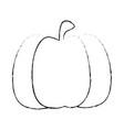 healthy vegetables design vector image