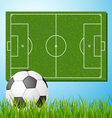 Football field with ball vector image vector image