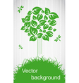 Ecological tree vector image vector image