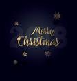 christmas typographical on shiny xmas background vector image