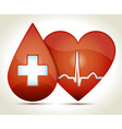 Red heart normal rhytm drop of blood vector image