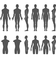 Man woman mannequin outlined silhouette torso vector image