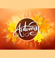Banner with hand lettering label - autumn - vector image