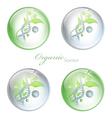 organic science balls vector image vector image