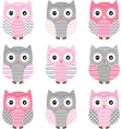 Pink and Grey Cute Owl Collections vector image