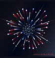 firework in the colors of the american flag vector image