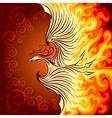 Fire Phoenix vector image