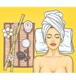 Pop art beautiful woman in the spa salon vector image