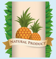pineapple natural product poster ribbon vector image