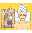 Pop art beautiful woman in the spa salon vector image