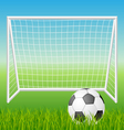 Football goal with ball vector image vector image