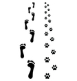 prints of paws vector image vector image