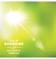 Warm Summer Sun Abstract Background With vector image
