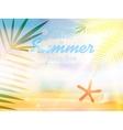 Summer calligraphic designs vector image vector image