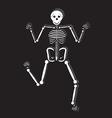 Human Skeleton vector image