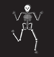 Human Skeleton vector image