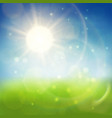 summer shiny background vector image
